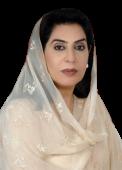 Fehmida_Mirza.png