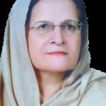 Meraj_Hamayun_Khan.png
