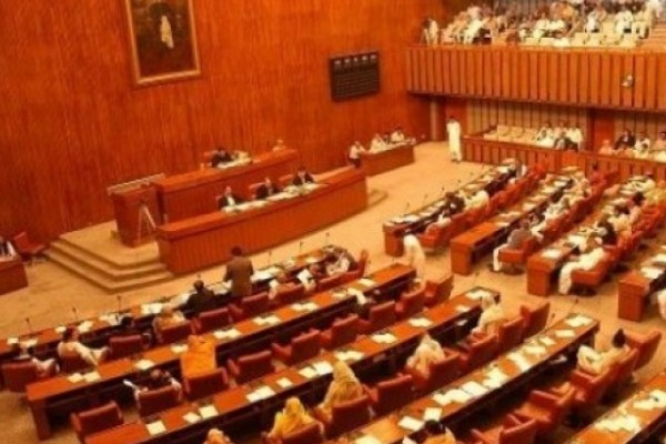Senate Takes Up Most of Its Agenda; Discusses Political Issues