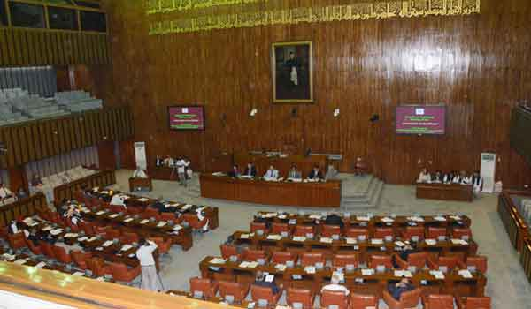 Senate Condemns Curfew and Lockdown in Srinagar